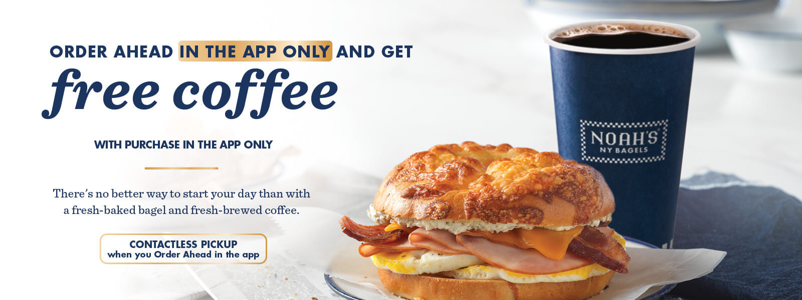 ROTATING SLIDER: Free Coffee, Any Size, on any orders purchased through the app!